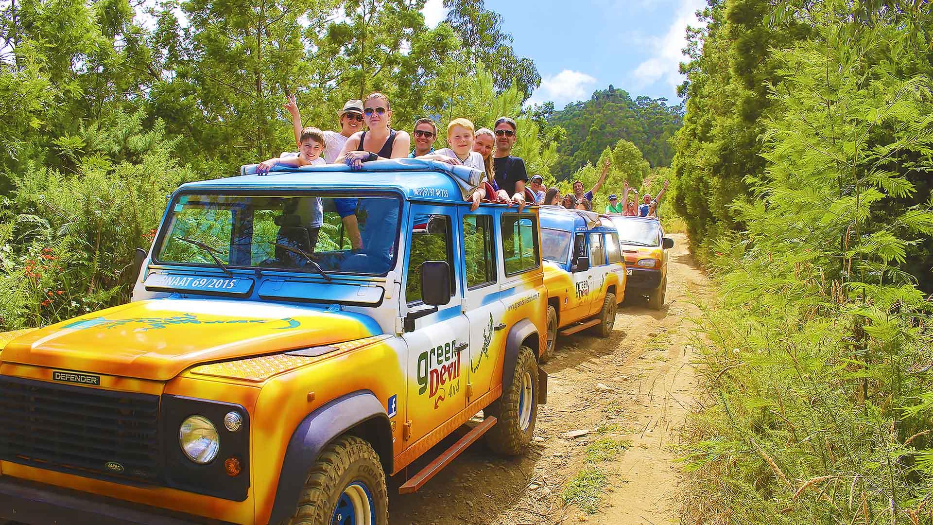 safari3