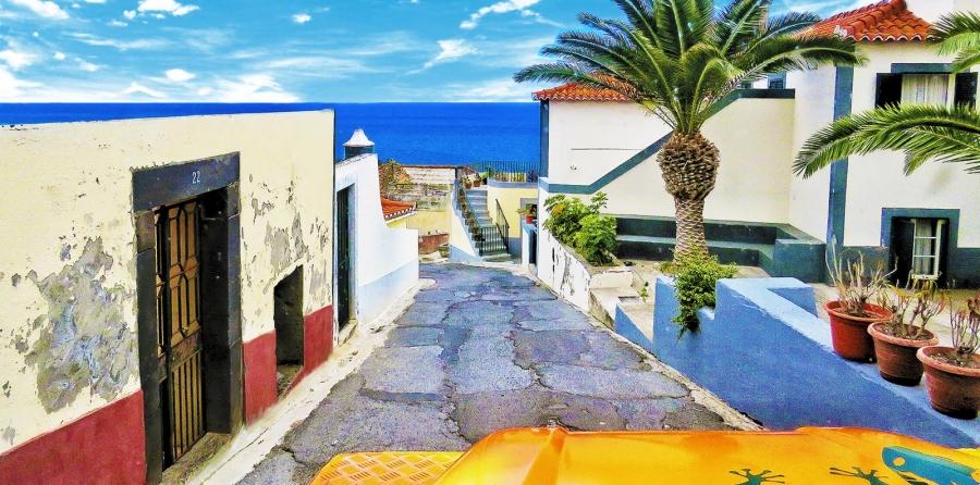 Vineyards & Colors – Cabo Girão